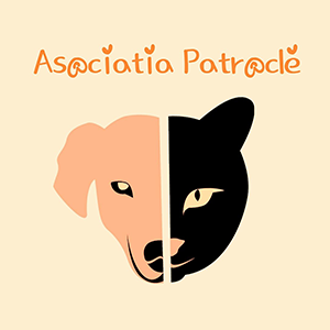 Adapostul Patrocle Dragasani