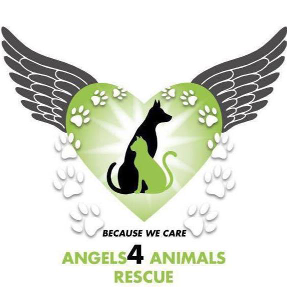 Angels 4 Animals Rescue