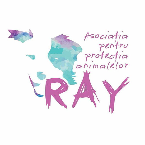 Ray Animal Rescue